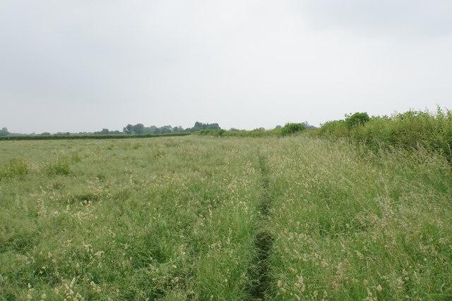 Footpath near Chestnut Farm