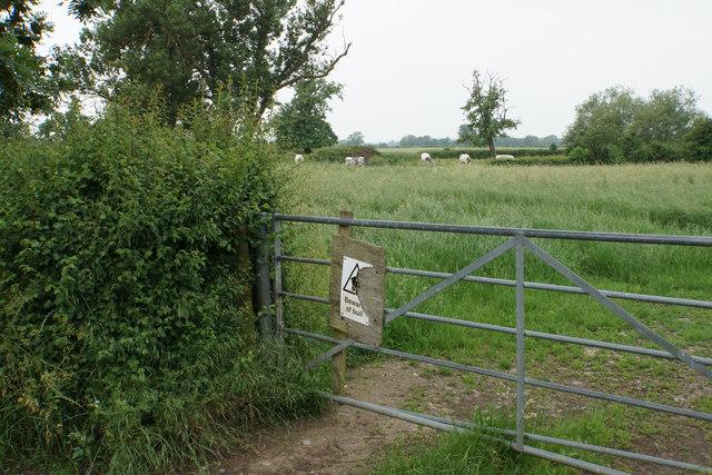 Fields near Uckington