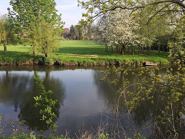 Spring has sprung by the River Avon, east Warwick