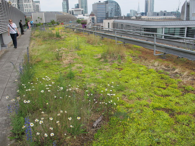 Roof garden, One Wood Street, City of London