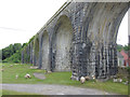 S7349 : Sheep and Viaduct by kevin higgins