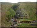 NY8508 : Woofergill Scar by Karl and Ali