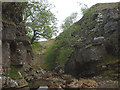 NY8508 : Woofergill Scar (2) by Karl and Ali