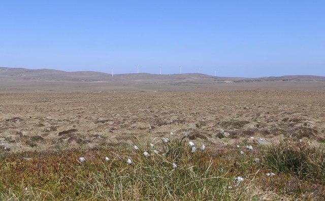 View across moorland near Gillebish, Isle of Lewis