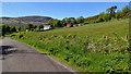 V9955 : Lane near Coomhola by Mick Garratt