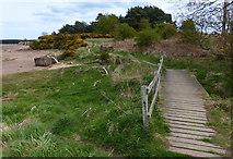 NT6378 : John Muir Way at Hedderwick Sands by Mat Fascione