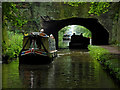 SJ8219 : Cowley Tunnel near Gnosall, Staffordshire : Week 24