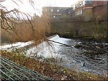 SJ9698 : Weir on the River Tame by Gerald England