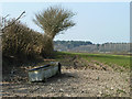 TQ2513 : Water trough behind hedge by Robin Webster