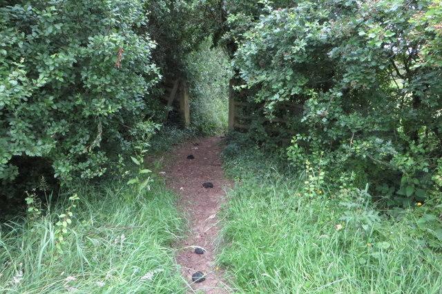 Bridleway to Bainton