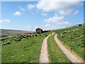 NY8803 : Farm road on slope of West Stonesdale by Trevor Littlewood