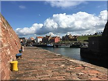 NT6779 : A View of Victoria Harbour Dunbar by Jennifer Petrie