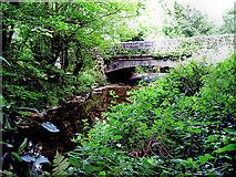 S4263 : Arigna Bridge by kevin higgins