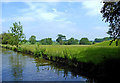 SJ8318 : Canal and pasture south of Gnosall in Staffordshire by Roger  Kidd