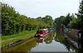 SJ8612 : Canal east of Wheaton Aston in Staffordshire by Roger  Kidd