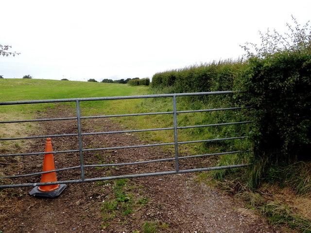 Gate, Mullaghslin Glebe
