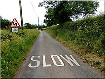 H5672 : Slow marking along Tullyneil Road by Kenneth  Allen
