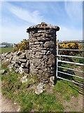 J1018 : Rounded gate pillar on the Larry Tam's Loanan by Eric Jones