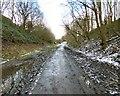 SJ9594 : Trans Pennine Trail by Gerald England