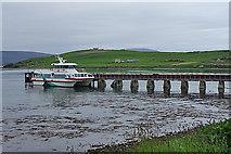HY3103 : Catamaran at Houton by Anne Burgess