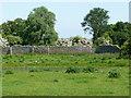 TL4968 : Medieval fishpond, Denny Abbey by Christine Johnstone
