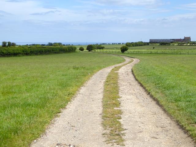 Bridleway and farm road to Gnipe Howe Farm