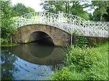 TL8425 : The Iron Bridge in Marks Hall Park by Marathon