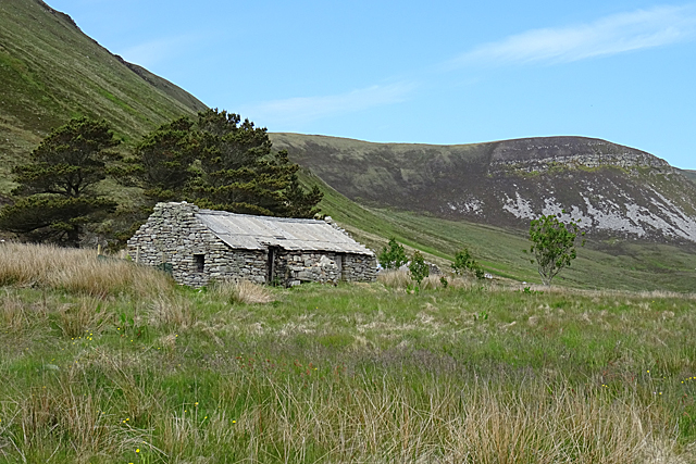 Ruined Cottage by Anne Burgess