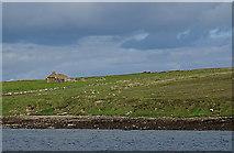 ND3196 : Island of Fara by Anne Burgess