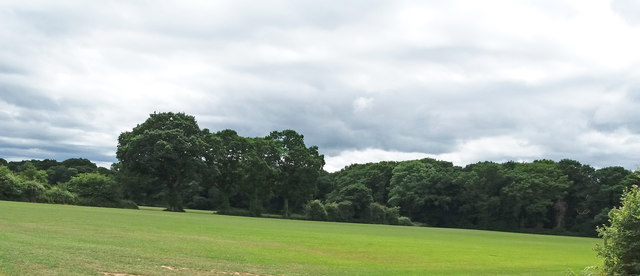 Courtlands, near Dulford