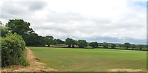 ST0705 : Field near Dulford by Martin Bodman