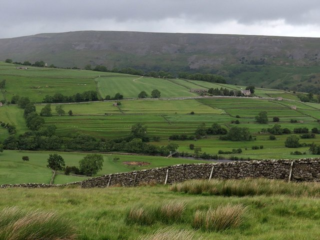 Swaledale west of Reeth