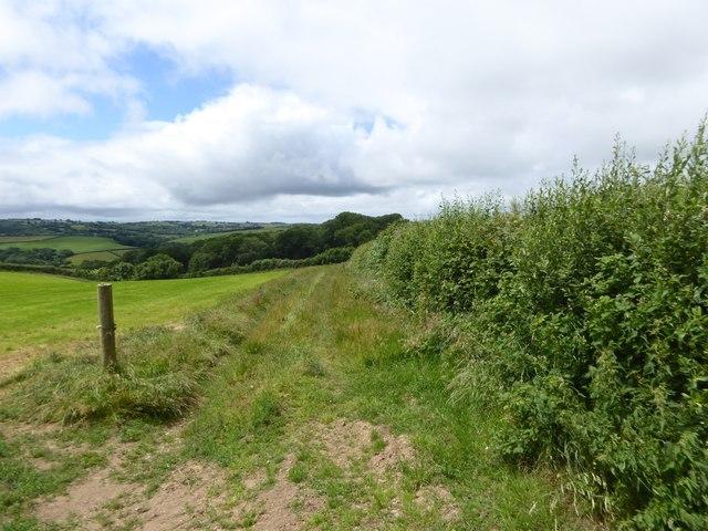 Farm track west of Southcott