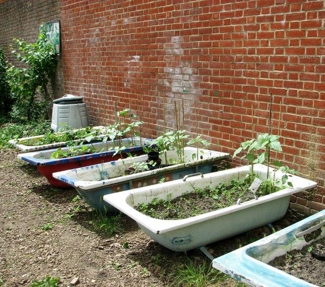 Bath tubs used as planters © Evelyn Simak :: Geograph ... Garden Planters Norwich on vermont garden, newcastle garden, amsterdam garden, paris garden,