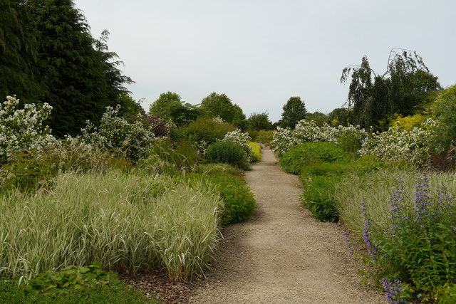 The Rogues Gallery Garden, Breezy Knees Gardens