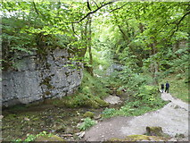 SD9163 : Path between Janet's Foss waterfall and Malham by pam fray