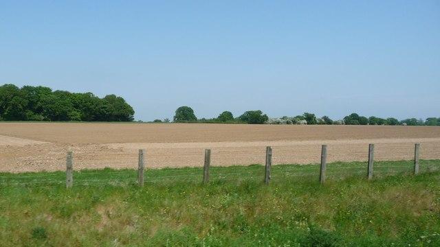 Bare field, south of Brickkiln Grove