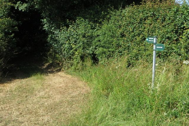 Footpath towards Tusmore Park