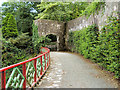 S5210 : A Terrace Walk, Mount Congreve Gardens by David Dixon