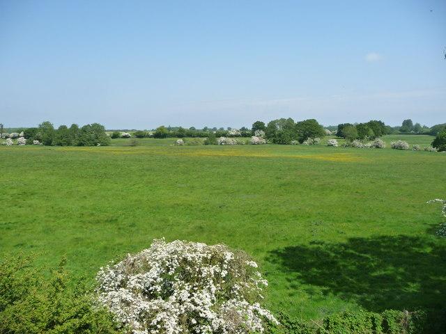 Farmland south of Crownthorpe Carr