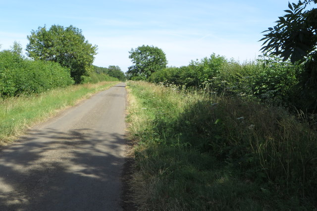 Former road from Baynard's Green to Stoke Lyne