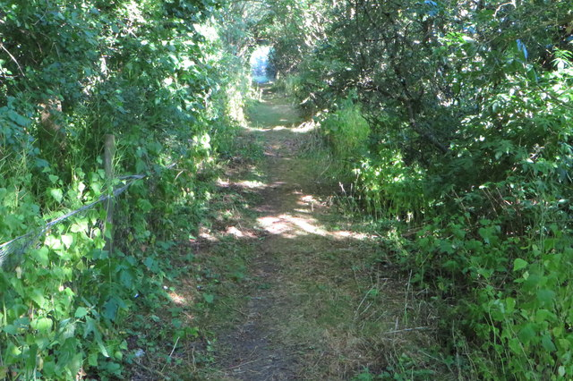 Bridleway to Trowpool
