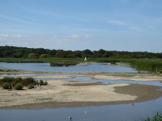 View across The Scrape from the East Hide