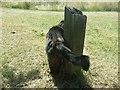 TQ1771 : Big cat on Ham Lands by David Howard