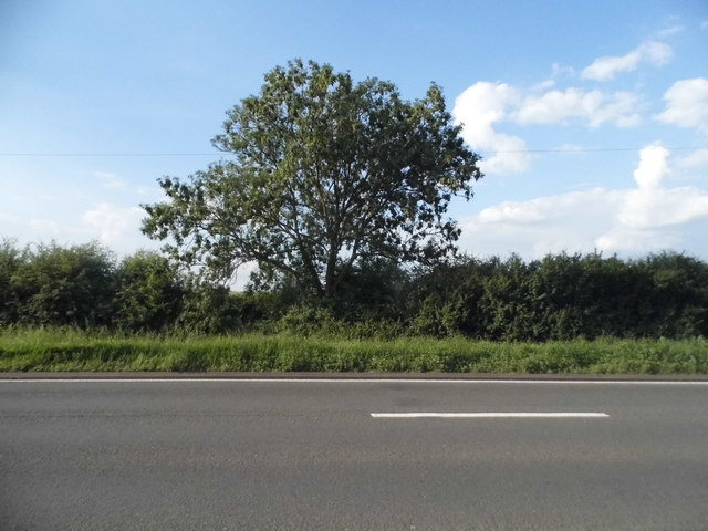 Alcester Road, Drayton