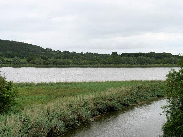 River Suir, East of Kilmeadan