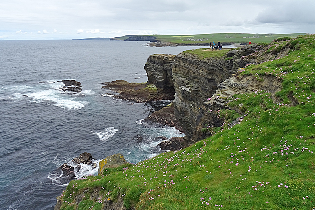 Cliffs and Skerries