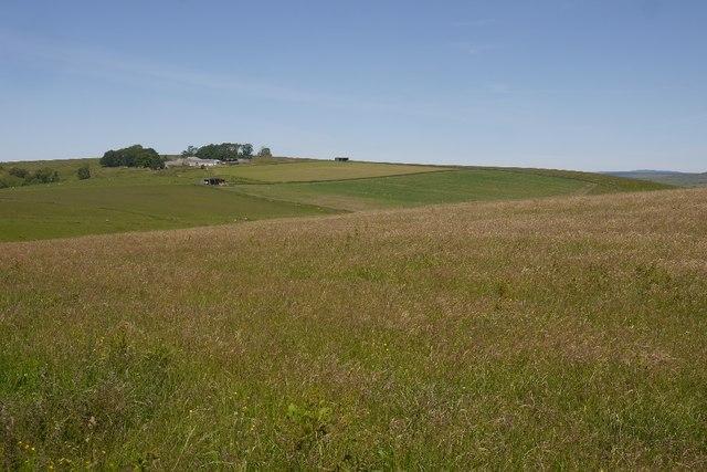 Grass crop, Hole Mill
