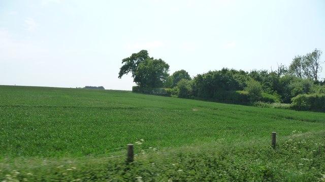 Farmland east of Crownthorpe Bridge
