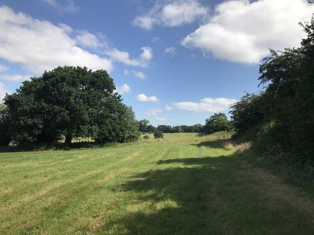 Field corner near Diglake